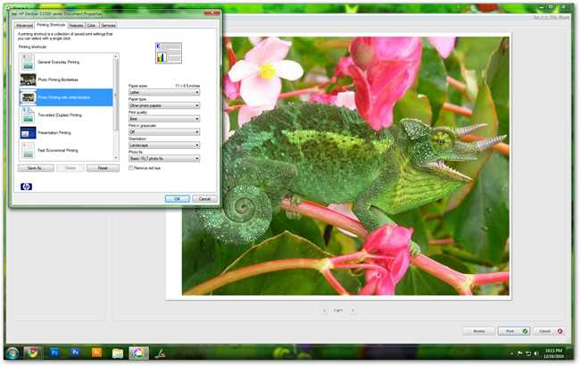 Improve Your Photo Prints By Properly Preparing Your Printer